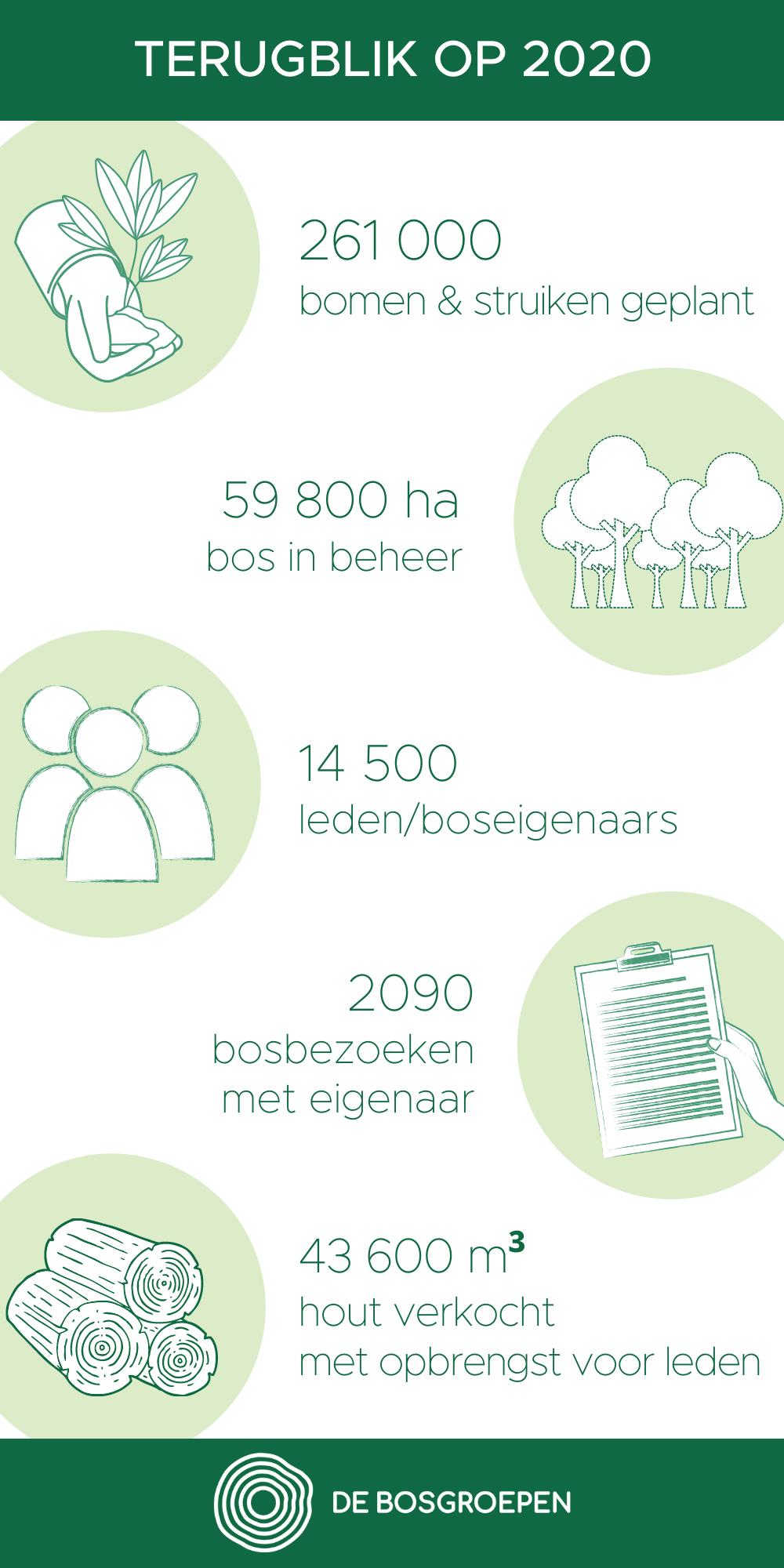 Jaarverslag De Bosgroepen